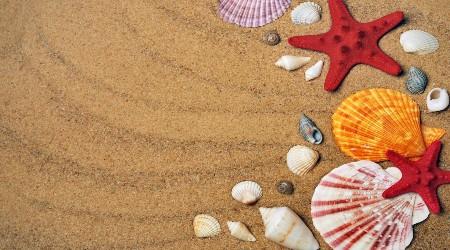sommar och semester